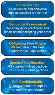 The key benefits of custom peptides from Mimotopes